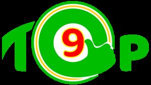 Tốp 9 công ty dịch vụ vận chuyển chuyên nghiệp